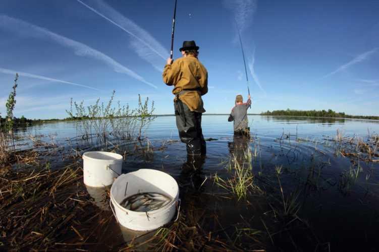 Рыбалка весной: что ловить?