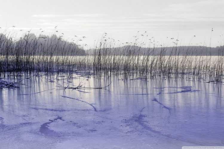 Зимняя рыбалка и безопасное поведение на льду